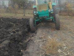 Продам Трактор Dondușeni
