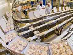 Muncitori la producere semifabricate alimentare Chișinău mun.