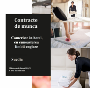 Contracte de munca in Suedia Chișinău mun.